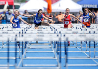 State Track 1A-2A-3A Sat Hurdles 019